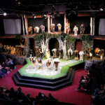 Case Study: Digital Strategy Breaks Record for Community Theatre